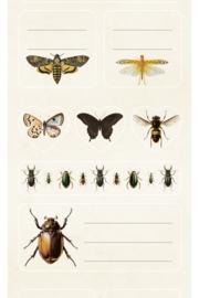 Tarraarkki Hyönteisiä