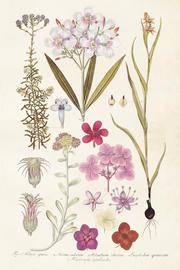 Vintage Poster Blommor 59