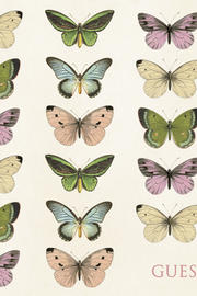 Guestbook Butterfly